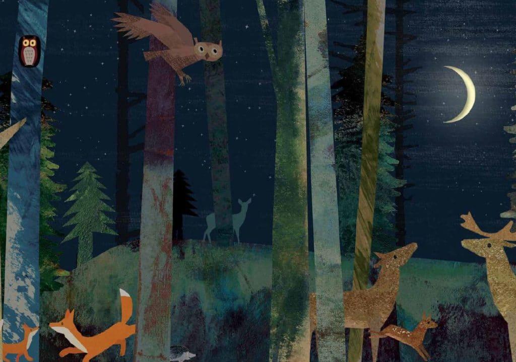 Mond-Eine-Reise-durch-die-Nacht-Im-Wald-1024x719