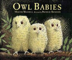 Owl babies lIbrio library
