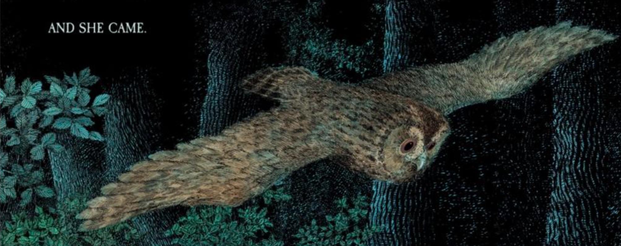 Owl_Babies_Librio_Library